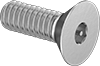Tamper-Resistant Flat Head Screws