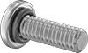 Sealing Rounded Head Screws