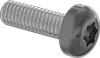 Metric Painted Steel Pan Head Torx Screws