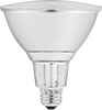 Screw-In Base Floodlight Bulbs