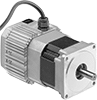 Speed-Control Motors