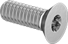 Torx Flat Head Screws