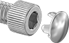 Chrome-Plated Plugs for Stainless Steel Socket Head Screws