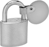 Weather-Resistant Padlocks with Identification Tags