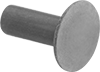 Steel Low-Profile Domed Head Solid Rivets